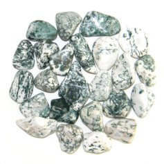 Tree Agate, tumbled (1 piece)