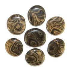 Stromatolite, Flat (1 piece)