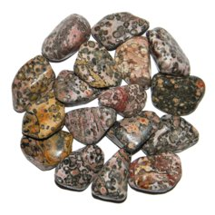 Leopardskin Jasper, tumbled (1 piece)
