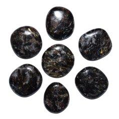 Antofülliidist lapik kivi (1 tk)